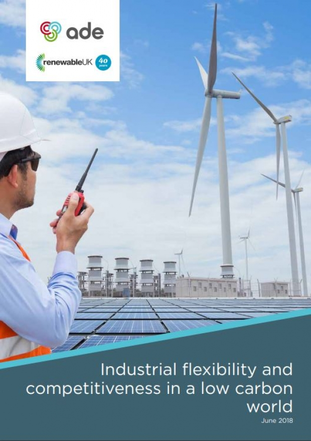 Industrial flexibility and competitiveness in a low carbon world | ADE publications